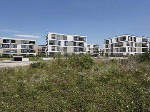 Wohnüberbauung Belcentro, Oftringen